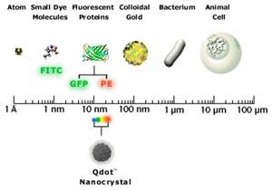 QDot-nanocrystal-size-sm