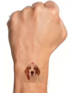 picattoo