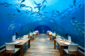 quirky  underwater restaurant from trip advisor